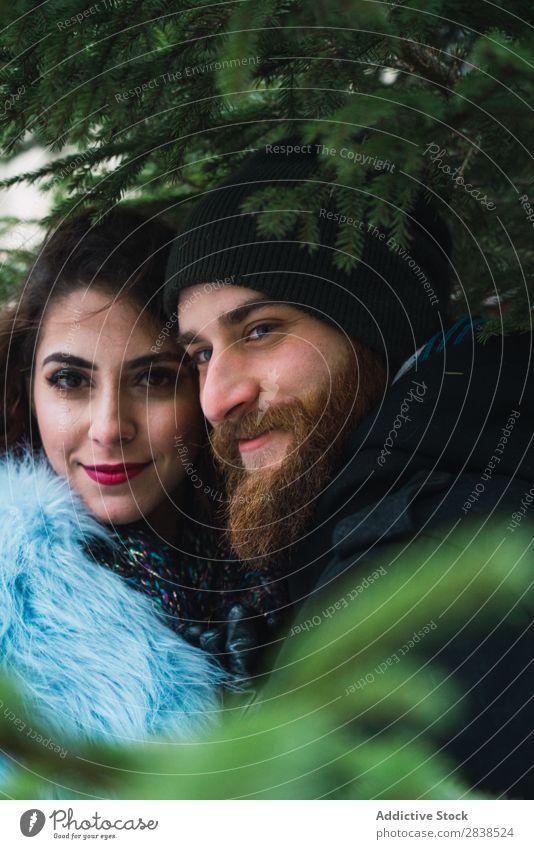 Paarung in Tannenästen Branche Baum Lächeln Natur Glück Mensch Ferien & Urlaub & Reisen Tourismus Liebe Fröhlichkeit Partnerschaft heiter Jugendliche Mann Frau