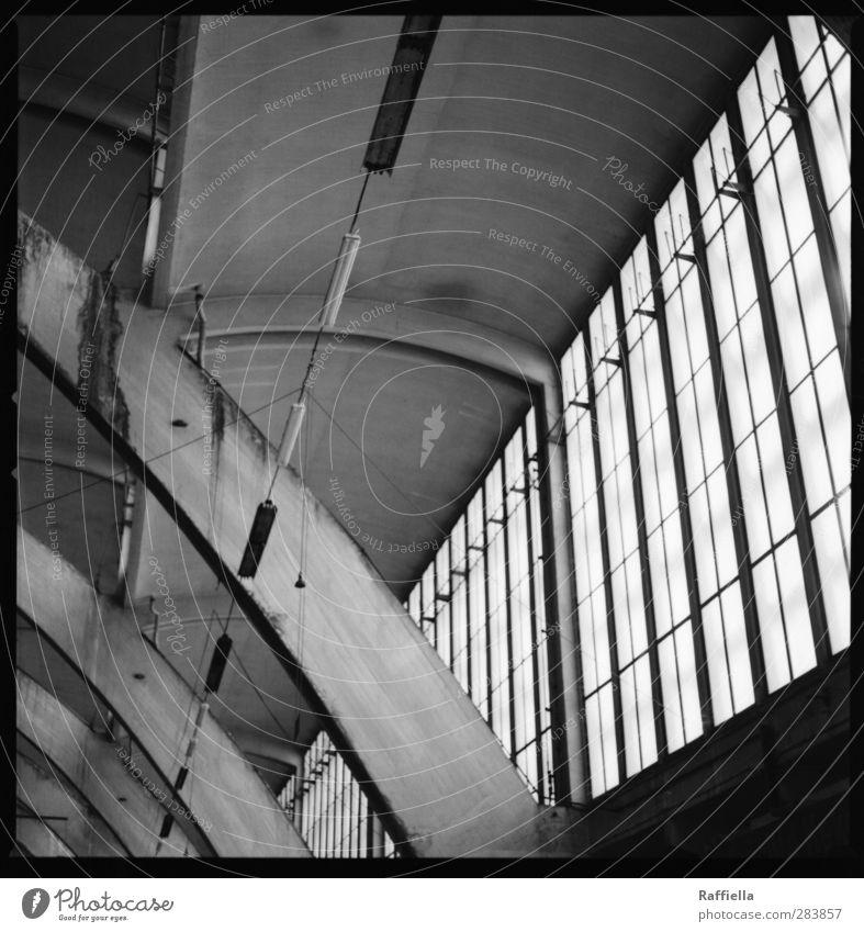 Markthalle VIII Fenster Wand oben grau Mauer Fassade Beton Lagerhalle Bogen Halle Wölbung Betonwand Deckenbeleuchtung Deckenlampe Fensterfront Markthalle