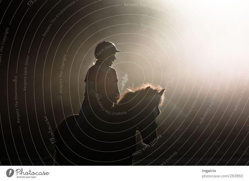 Das Glück der Erde...... Reiten Reitsport Reiter Mensch Frau Erwachsene Körper Oberkörper 1 Nebel Staub Tier Nutztier Pferd Island Ponys Bewegung lachen Sport