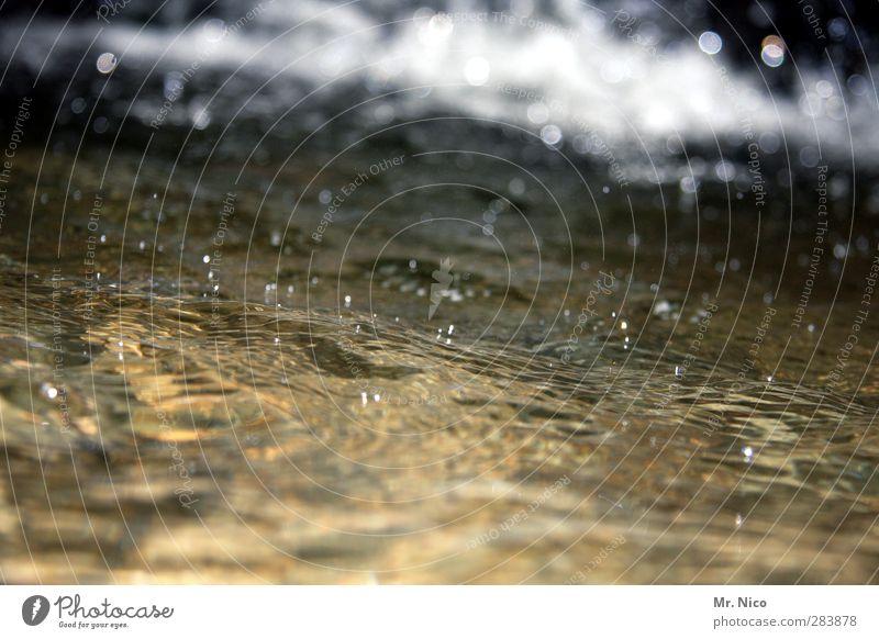 kölnisch wasser Natur Wasser Umwelt kalt Wellen nass Wassertropfen Kraft Klarheit Fluss Tropfen Regenwasser Flüssigkeit Erfrischung feucht Bach