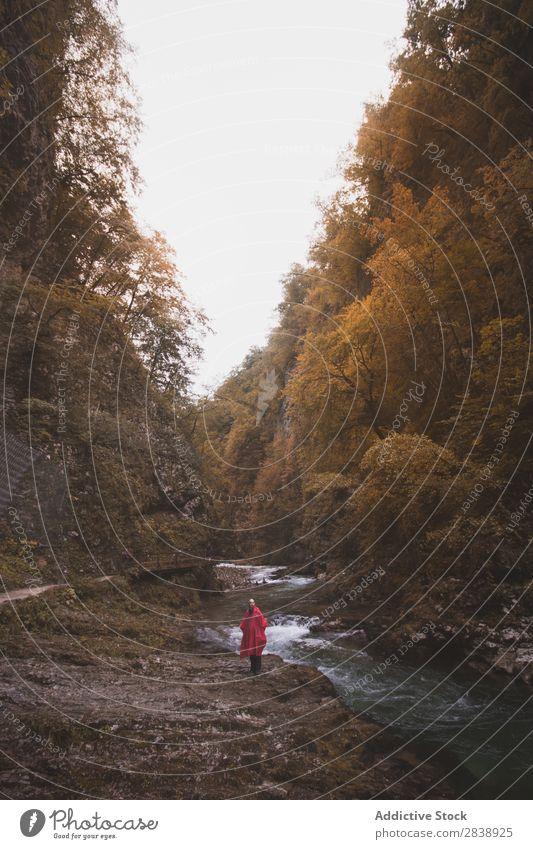Mann, der am Fluss im Wald spazieren geht. Berge u. Gebirge Herbst laufen Tourist Ferien & Urlaub & Reisen Mensch Wasser Landschaft Natur schön Farbe mehrfarbig