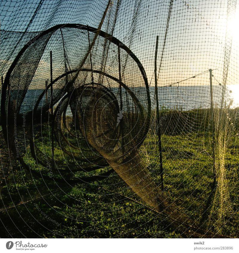 Stille Tage auf Usedom Himmel Natur Wasser ruhig Landschaft Umwelt Gras Horizont Wetter Klima leuchten Schönes Wetter Idylle rund fest Zusammenhalt