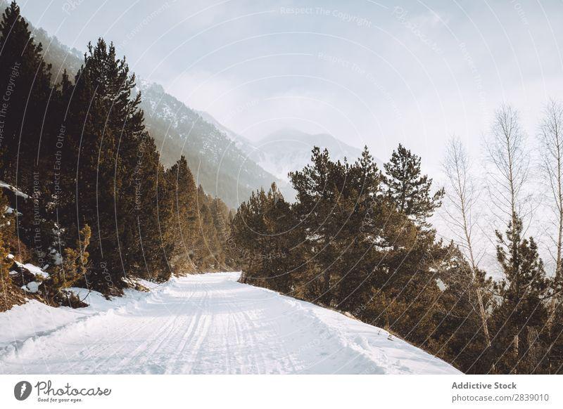 Landstraße in schneebedeckten Hügeln Straße Winter Fluggerät Aussicht Berge u. Gebirge Schnee Landschaft Natur weiß Eis Jahreszeiten kalt