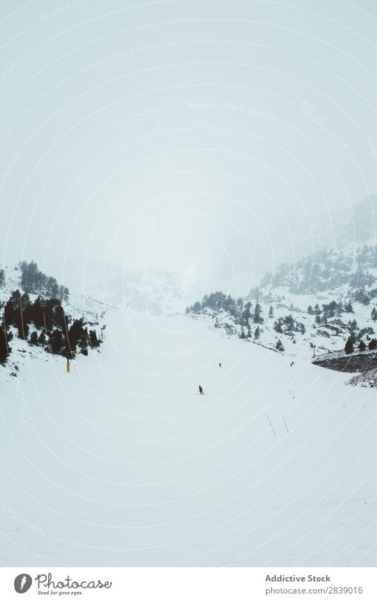 Snowboard-Touristen auf dem Snowboard Mensch Reiten Sport Winter Hügel Berge u. Gebirge Schnee Landschaft Natur weiß Eis Jahreszeiten kalt