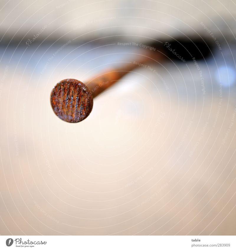 80er Flachkopf Handwerker Baustelle Nagel Flachkopfnagel Stein Metall Rost alt dunkel dünn Spitze braun grau Vergänglichkeit Wandel & Veränderung Spalte Fuge