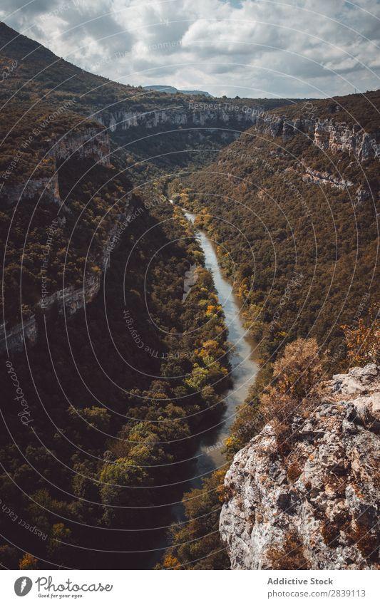 Malerischer Blick auf den Canyon mit Bäumen Landschaft Schlucht Fluss Tal Baum Aussicht Tourismus