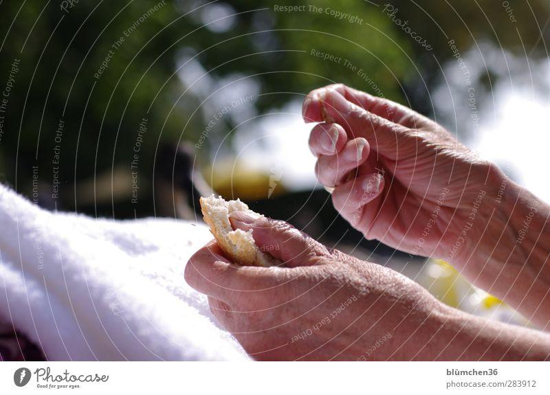 Mahlzeit... feminin Großmutter Haut Hand Finger 60 und älter Senior Essen füttern alt natürlich Appetit & Hunger Zeit sensibel verwundbar Brot trocken reif