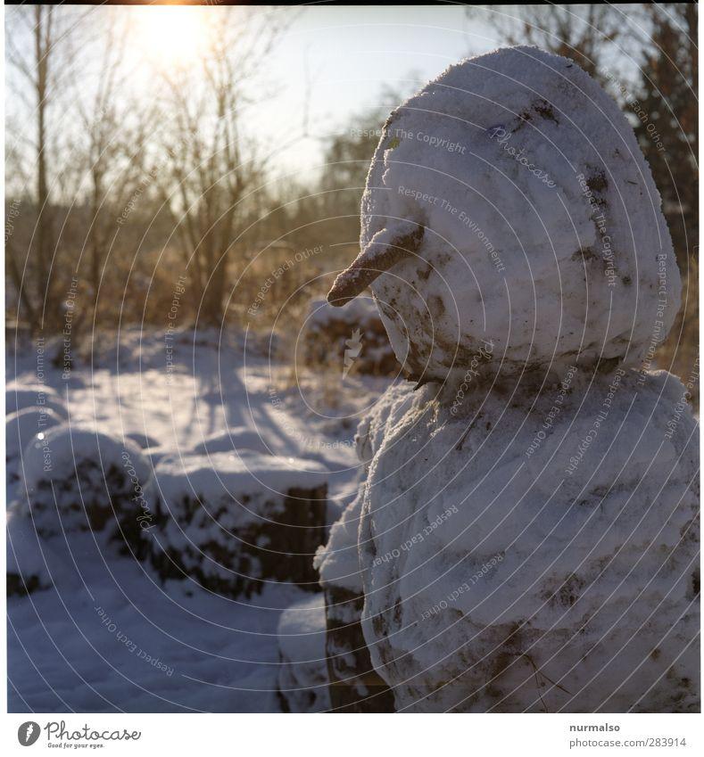 Lieber Schneemann Lifestyle Winter maskulin 1 Mensch Kunst Natur Schönes Wetter Eis Frost Park Zeichen frieren kalt lustig Originalität Stimmung Freude Kindheit