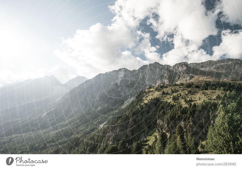 Holeradiahü, holadio, holadiö! Himmel Natur blau Ferien & Urlaub & Reisen grün Sommer Baum Tier Wolken Landschaft Ferne Umwelt Berge u. Gebirge Freiheit Luft
