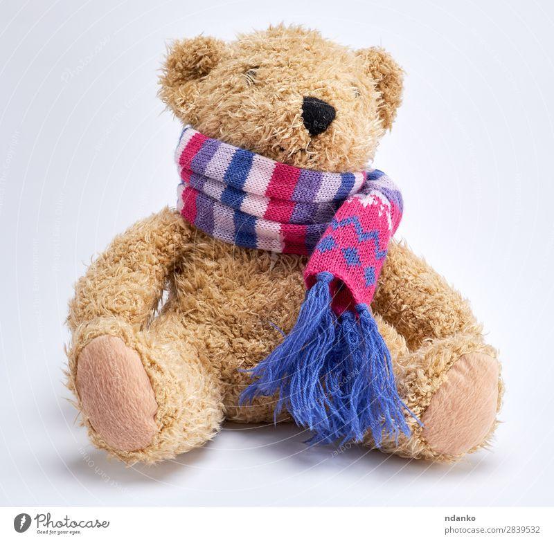 Teddybär in einem gestrickten mehrfarbigen Schal Freude Kind Kindheit Spielzeug Puppe alt sitzen lustig niedlich retro weich braun gelb weiß Einsamkeit Bär