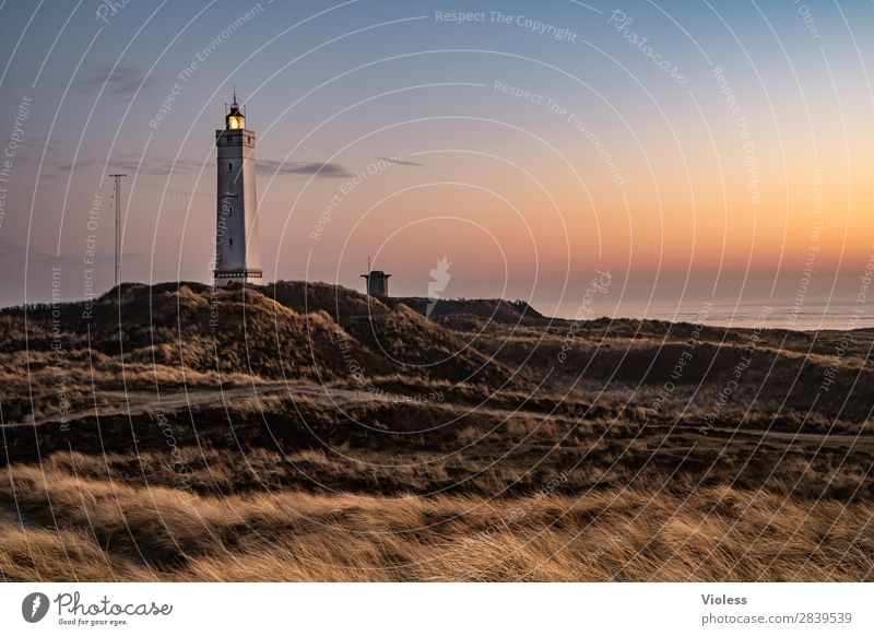 blavandshuk fyr lighthouse Leuchtturm Blavands Huk Blavands Fyr Dänemark Düne Dünengras Jütland Lighthouse Nordsee Bunker Sonnenuntergang Dämmerung Licht dunkel