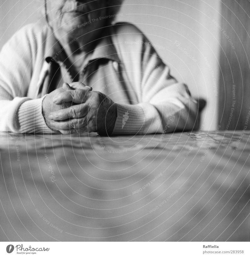 Ruhe feminin Weiblicher Senior Frau Gesicht Arme Hand Finger 1 Mensch 60 und älter Hemd Bluse Strickjacke warten sitzen Hautfalten gefaltet festhalten haltend