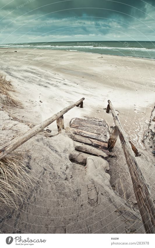 Schweigen Himmel Natur Wasser Pflanze Meer Strand Einsamkeit Wolken Landschaft Winter Umwelt Gras Wege & Pfade Küste Sand Horizont