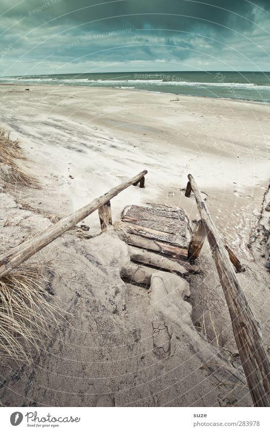 Schweigen Strand Meer Wellen Umwelt Natur Landschaft Pflanze Urelemente Sand Wasser Himmel Wolken Horizont Winter Klima Wetter Gras Küste Ostsee Treppe