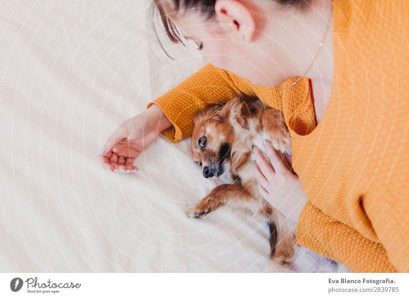 Frau Hund schön weiß Erholung Tier Freude Lifestyle Erwachsene Liebe lustig Familie & Verwandtschaft lachen Glück Freundschaft schlafen