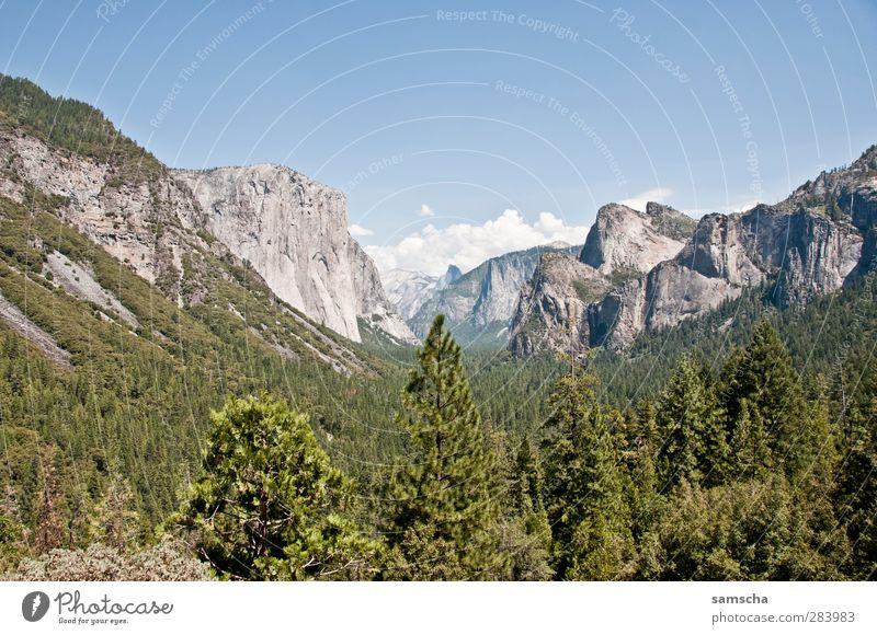 Tunnel View Natur Landschaft Pflanze Himmel Baum Wald Felsen Alpen Berge u. Gebirge Gipfel Schlucht wandern Ferne natürlich schön Abenteuer