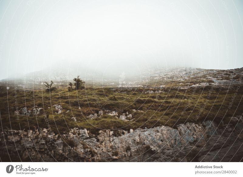 Felsiges Gelände im Nebel Felsen Landschaft Tal Panorama (Bildformat) majestätisch abgelegen