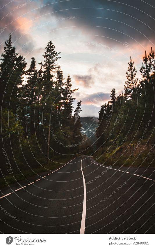 Autobahn in Bergen und Wäldern Landschaft Fahrbahn Berge u. Gebirge Wald Wege & Pfade malerisch Ferien & Urlaub & Reisen Park Straße ruhig natürlich Aussicht