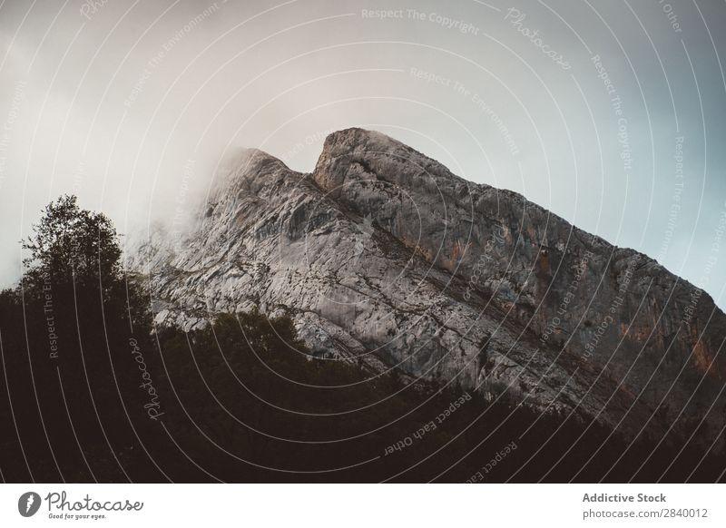 Malerische Aussicht auf die Berge Berge u. Gebirge Wald Sonnenlicht Sonnenstrahlen Landschaft Panorama (Bildformat) Szene dramatisch Sommer Natur Idylle