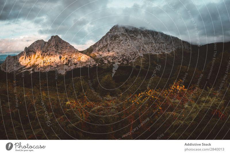 Malerische Aussicht auf die Berge bei Sonneneinstrahlung Berge u. Gebirge Wald Sonnenlicht Sonnenstrahlen Landschaft Panorama (Bildformat) Szene dramatisch