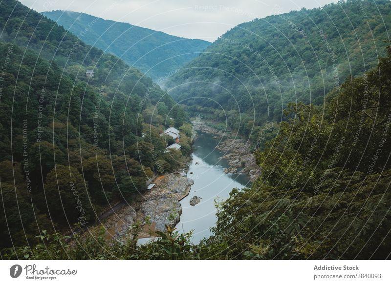 Fluss, der zwischen den Hügeln fließt Natur grün Schlucht Aussicht Berge u. Gebirge Klippe Felsen Pflanze schön natürlich Jahreszeiten frisch strömen fließen