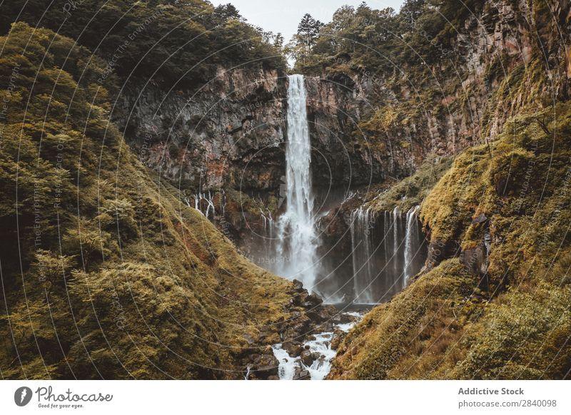 Wasserfall in grünen Bergen Natur Aussicht Berge u. Gebirge Hügel Klippe Felsen Pflanze schön natürlich Jahreszeiten frisch Umwelt Wald mehrfarbig Licht
