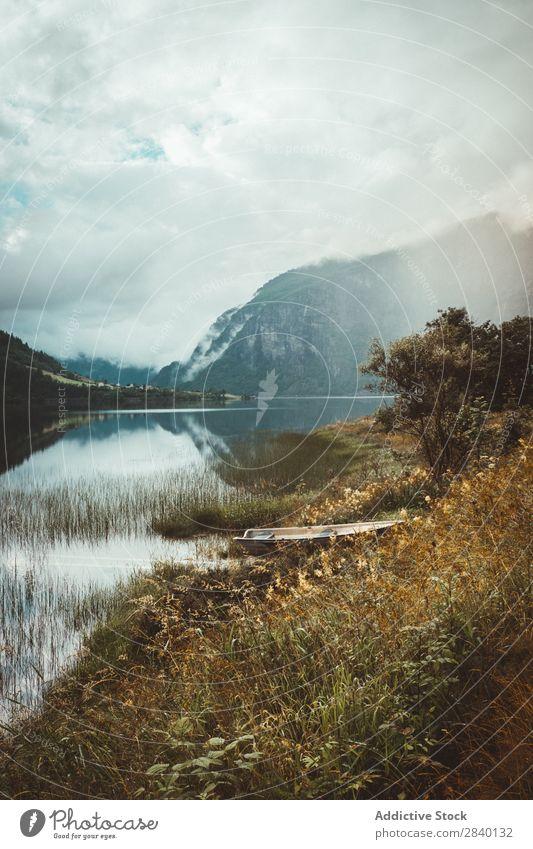 Seeufer in den Bergen Natur grün Aussicht Berge u. Gebirge Sonnenstrahlen Hügel Klippe Felsen Pflanze schön natürlich Jahreszeiten frisch Umwelt mehrfarbig