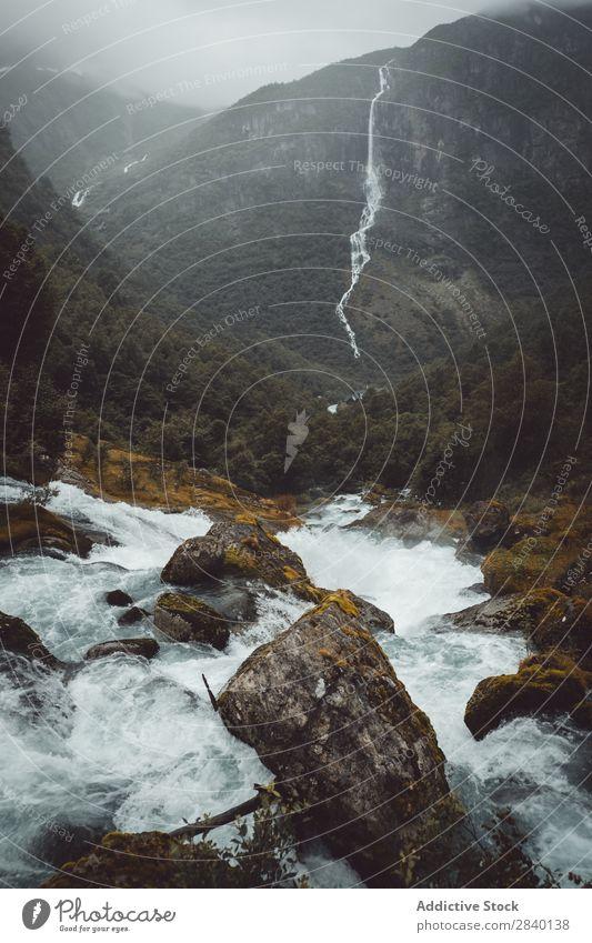 Kleiner Bergfluss Fluss Wasserfall Natur grün Aussicht Berge u. Gebirge Hügel Klippe