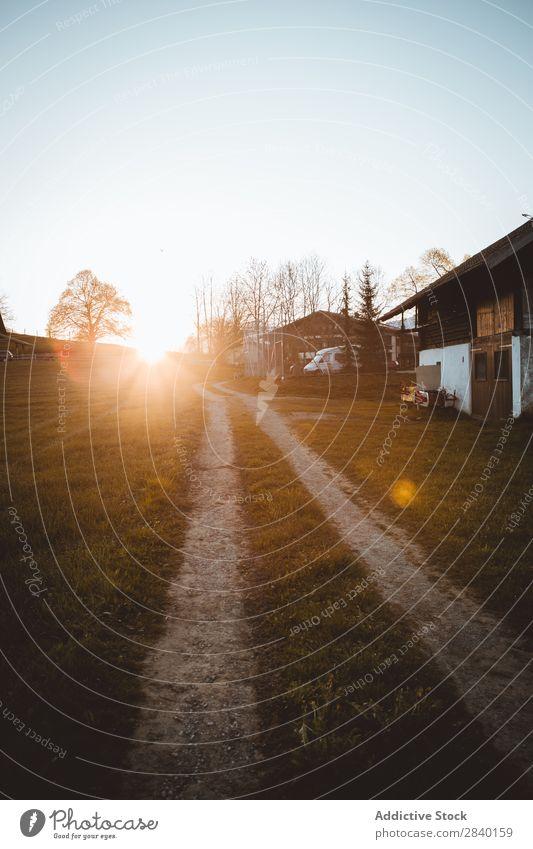Straße auf dem Feld im Dorf Haus Holz Tradition heimwärts grün Natur alt ländlich Landschaft Architektur Holzhaus altehrwürdig elegant Haushaltsführung