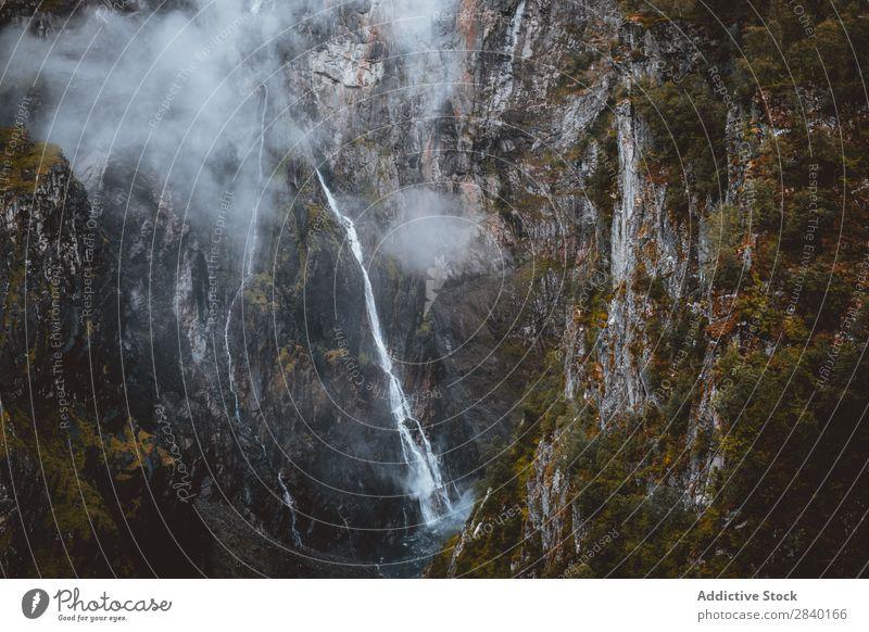 Dünner Wasserfall im Berg Berge u. Gebirge fließen dünn strömen Natur grün Aussicht Hügel Klippe Felsen Pflanze schön natürlich Jahreszeiten frisch Umwelt Wald