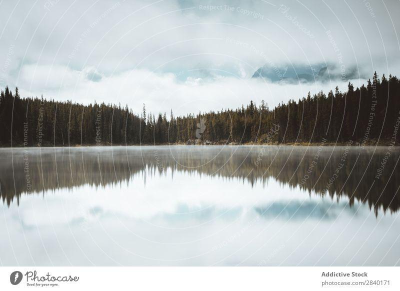 Jasper Icefields, Kolumbien, Kanada Wildnis Banff National Park See Kanadier Panorama (Bildformat) Alberta Natur Landschaft Eisfeld blau Gletscher Außenaufnahme