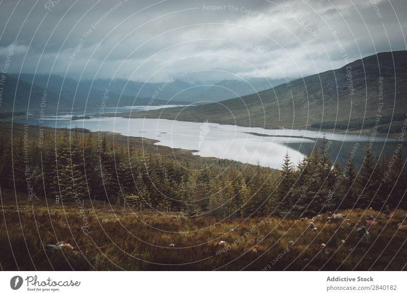Schottische Landschaft See Schottland Schotten Natur Wasser national Himmel Europa Reflexion & Spiegelung blau Schottisches Hochlandrind