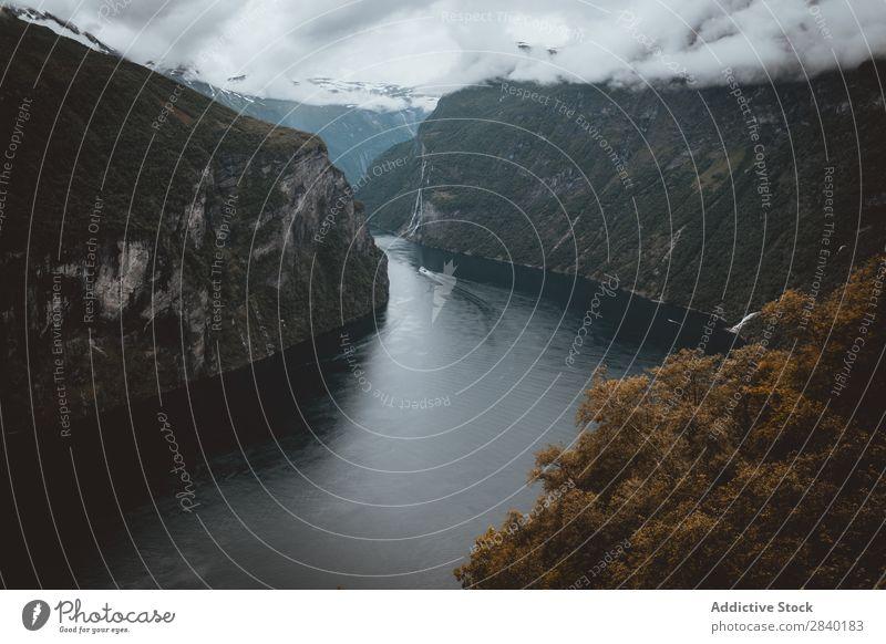 Geirange Fjord, Norwegen Geiranger grün Landschaft Geirangerfjord Beautyfotografie Menschenleer Tourismus Tag Kreuzfahrt Ferien & Urlaub & Reisen schön Sommer