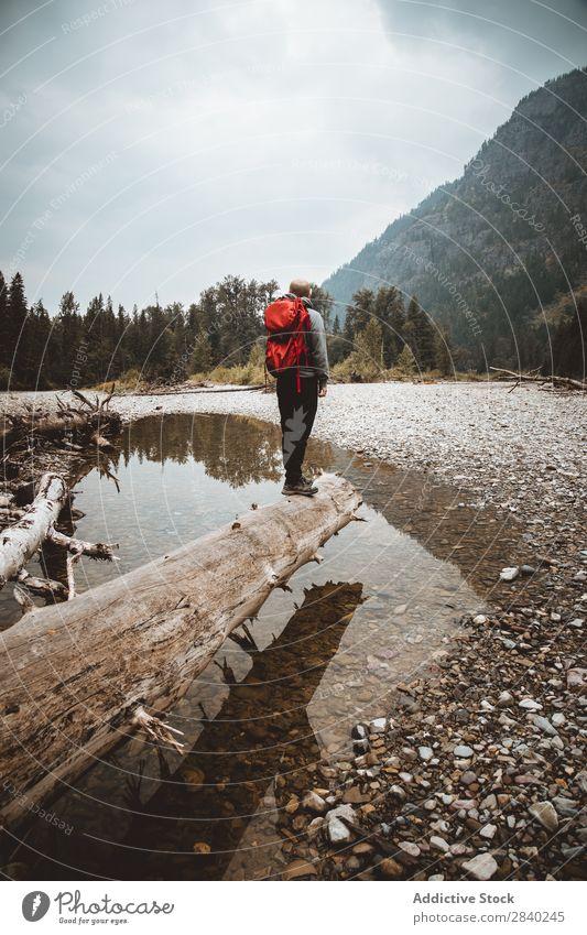 Mann mit Rucksack im Kofferraum Berge u. Gebirge Rucksacktourismus Landschaft Trekking Körperhaltung Abenteurer Tourismus Wetter Jahreszeiten Wald Sport