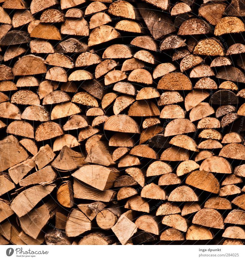 ... im Detail Natur Baum Winter Umwelt Herbst natürlich Warmherzigkeit heizen Brennholz Ofenheizung Holzfäller