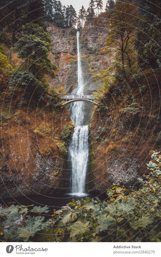 Multnomah Falls, Kolumbien, USA Landschaft Wasser Schlucht Fluss schön Wasserfall Oregon Wald grün Natur Kaskade Stürze Beautyfotografie Klippe Tourismus