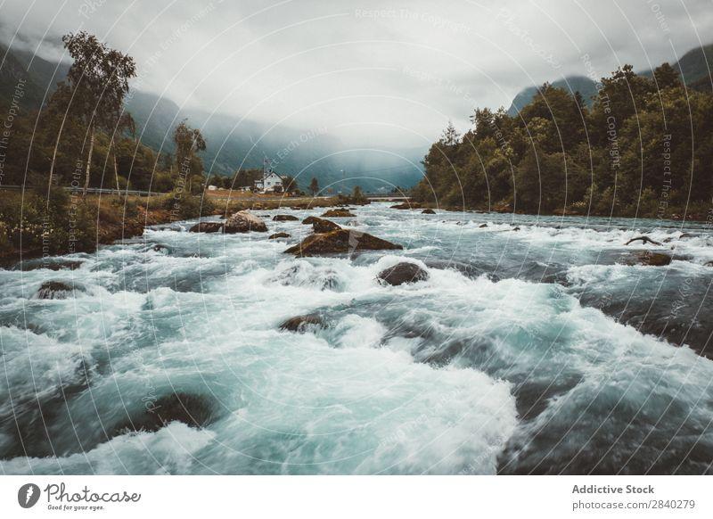 Schneller Bergfluss an einem trüben Tag Fluss Geschwindigkeit Berge u. Gebirge Geplätscher strömen Kaskade Umwelt Felsen Dunst frisch extrem Bewegung Abenteuer