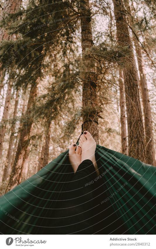 Weibliche Füße in der Hängematte Frau Wald Erholung Frieden Tourismus Morgen Freiheit Idylle aussruhen lügen nadelhaltig Baum genießend Fuß ruhig