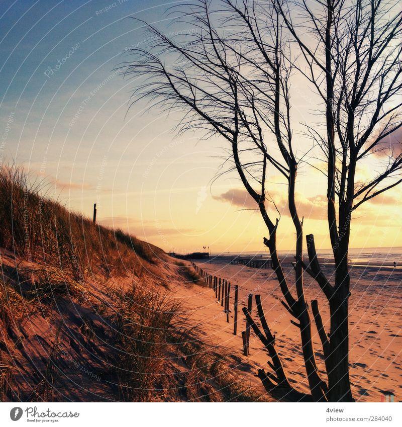 Sint Maartenszee Ferien & Urlaub & Reisen Ausflug Strand Meer Wellen Sand Wasser Himmel Wolken Horizont Sonnenaufgang Sonnenuntergang Sonnenlicht Baum Sträucher