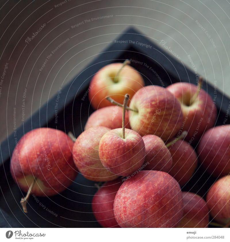 Äpfelchen Frucht Apfel Ernährung Picknick Bioprodukte Vegetarische Ernährung Diät frisch Gesundheit lecker Farbfoto Innenaufnahme Nahaufnahme Detailaufnahme