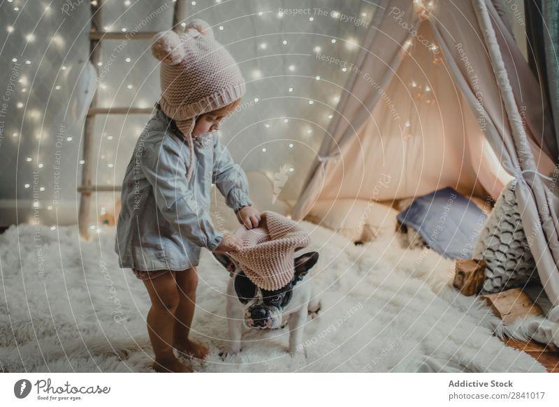 Kleinkind Mädchen setzt Hut auf einen Hund Weihnachten & Advent klein Haustier Kind niedlich Tier Kindheit Liebe Jugendliche heimisch Zusammensein Mensch Licht