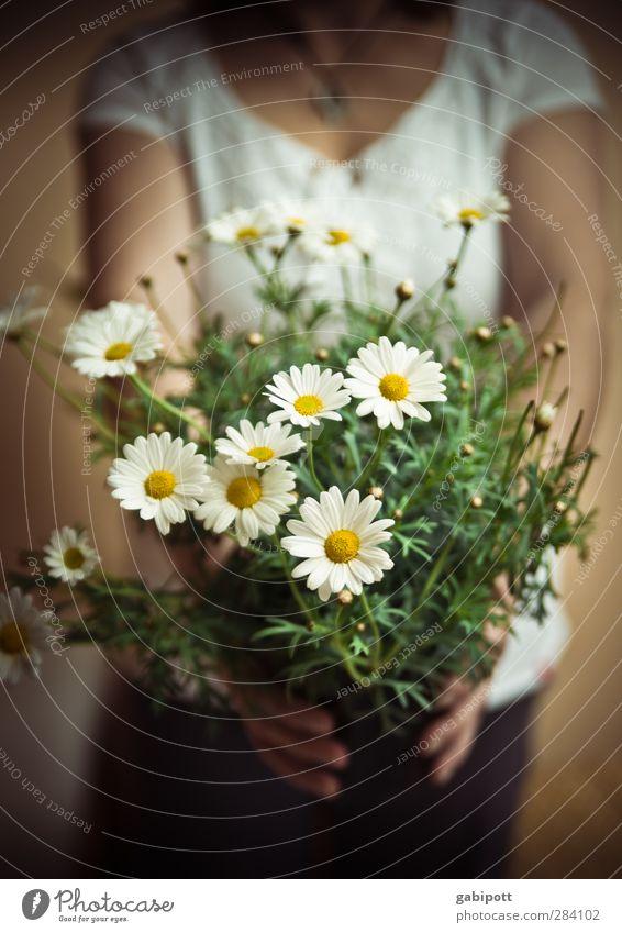 weiblich | Freundschaft Mensch Frau grün Blume Freude Erwachsene gelb feminin Glück braun Körper Fröhlichkeit Geschenk weich Romantik Freundlichkeit