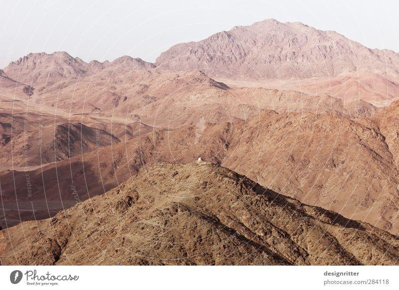 Wüstes Farbspiel Natur Ferien & Urlaub & Reisen rot Landschaft gelb Ferne Umwelt Wärme Berge u. Gebirge Sand Felsen braun rosa orange gold Klima