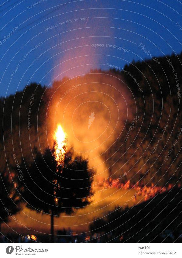 Burning Tree Baum schwarz Nacht Brand Höhenfeuer blau brennen