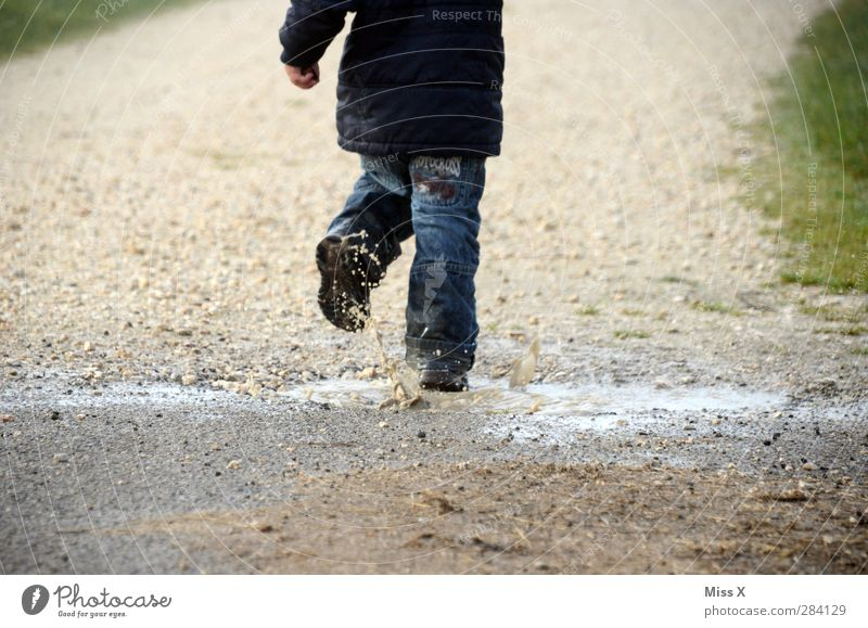 Nass Mensch Kind Wasser kalt Herbst Spielen Regen Nebel dreckig nass Wassertropfen Kleinkind rennen Pfütze spritzen hüpfen
