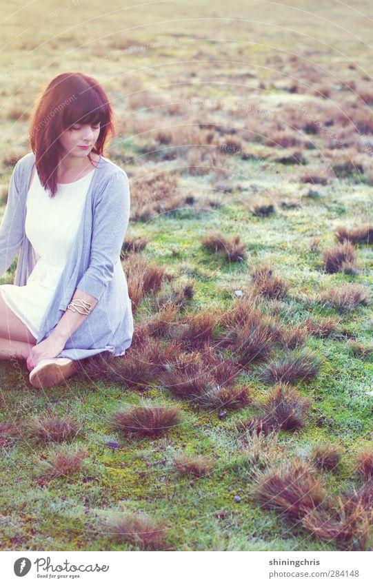 cold Mensch feminin Junge Frau Jugendliche 1 18-30 Jahre Erwachsene 30-45 Jahre Natur Landschaft Erde Herbst Eis Frost Gras Sträucher Wiese Feld Kleid