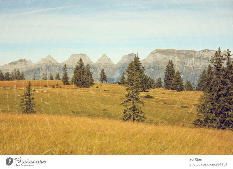 hinter dem Horizont. Ferne Freiheit Berge u. Gebirge wandern Natur Landschaft Himmel Herbst Schönes Wetter Pflanze Baum Gras Sträucher Feld Wald Hügel Alpen