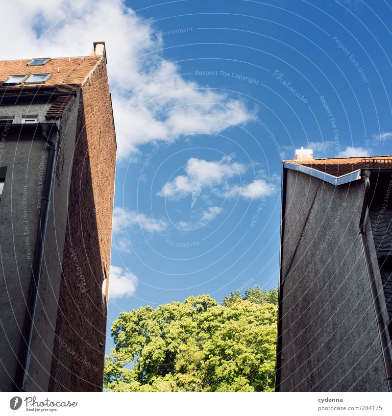 Lebensraum Lifestyle Häusliches Leben Umwelt Himmel Baum Stadt Haus Architektur Fassade ästhetisch Partnerschaft Einsamkeit Freiheit bedrohlich Hoffnung