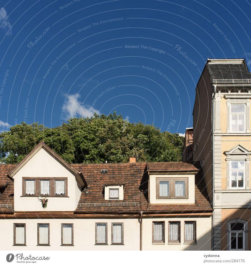 Zurückgeblieben Himmel Haus Umwelt Leben Architektur Lifestyle Freiheit Fassade Stadtleben Häusliches Leben Wachstum Ordnung ästhetisch Kommunizieren