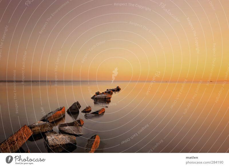 el oro Landschaft Urelemente Luft Wasser Himmel Wolkenloser Himmel Horizont Sonne Sonnenaufgang Sonnenuntergang Sonnenlicht Herbst Klima Schönes Wetter Küste